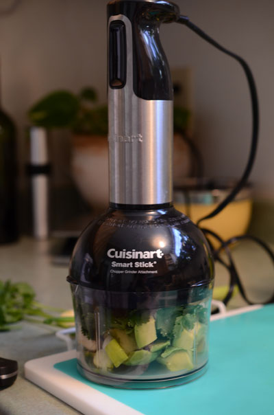cuisinart smart stick, photo by Jenny MacBeth