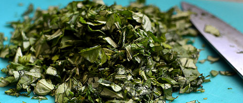 chopped basil, photo by Jenny MacBeth